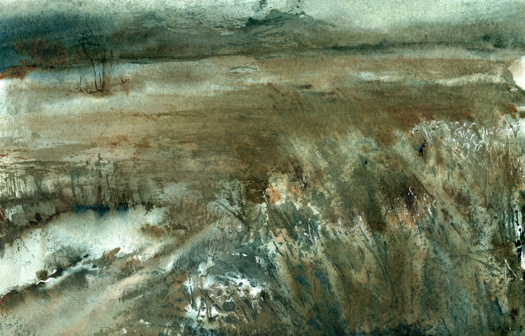Watercolor painting of a brown field with a puddle.