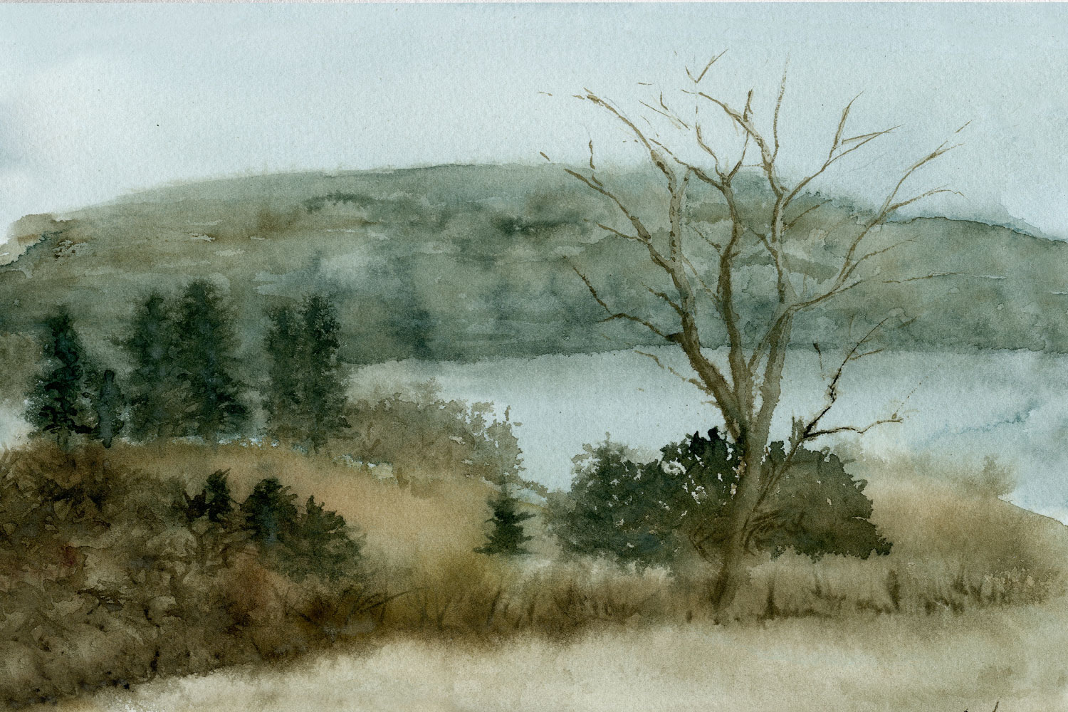 Watercolor painting of a spring field with a tree and distant river.