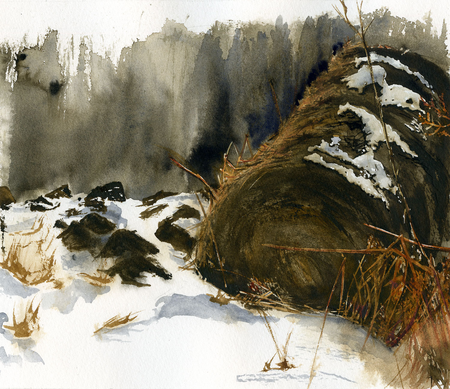 Watercolor painting of a haybale in the snow.