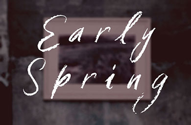 Link for the Early Spring collection.